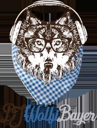 DJ Wolfi Bayer